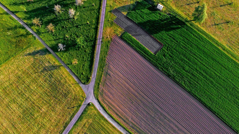 milieu-rural